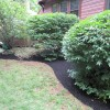 Spring cleanup and newly hydroseeded lawn