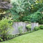 Backyard Landscaped