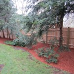 Backyard Fence and mulched bed