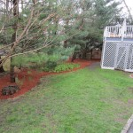 Last shot of the backyard