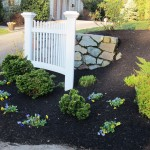Plantings and black mulch