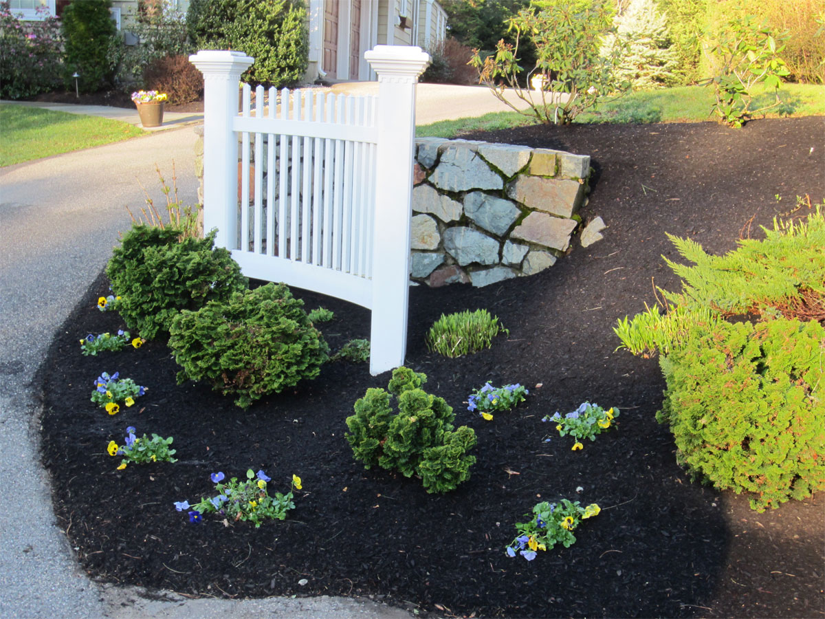 More Plantings and black mulch | Landscape Contractors Winchester ...