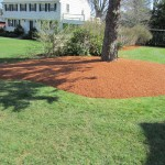 Edged and mulched with Hemlock mulch
