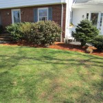Front yard edged and mulched